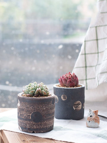 beautiful handmade succulent planter/pots