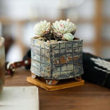 Rough Ceramic Succulent Planter with Drainage Hole