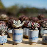 Elegant Blue and White Porcelain Asian Style Handmade Succulent Planter