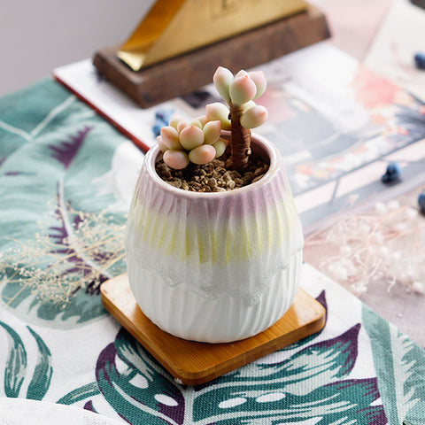 Small Ceramic Succulent Planter with Drainage Hole and Bamboo Tray/Saucer -- Galahad