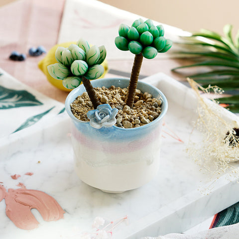 Small Ceramic Succulent Planter with Drainage Hole -- Launcelot