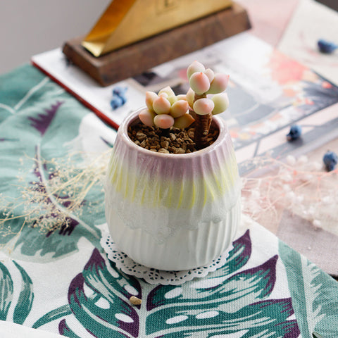 Small Ceramic Succulent Planter with Drainage Hole -- Galahad