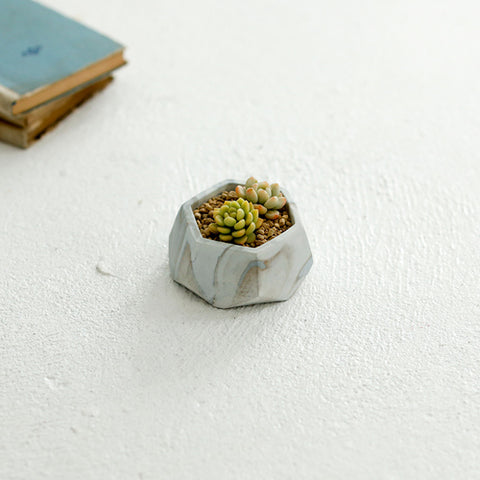 Small Concrete Succulent Planter with Drainage Hole -- Marble