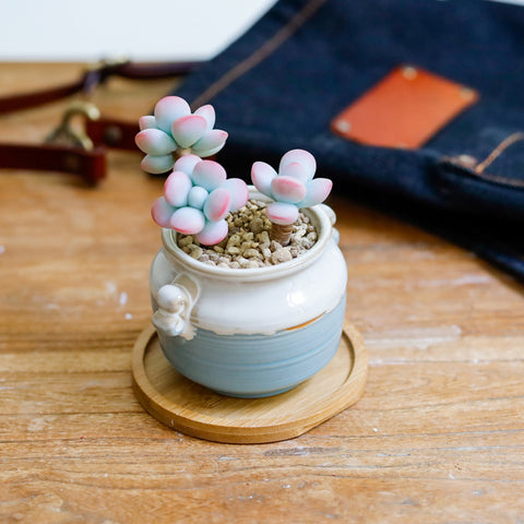Small Ceramic Succulent Planter with Drainage Hole -- Twin Flowers