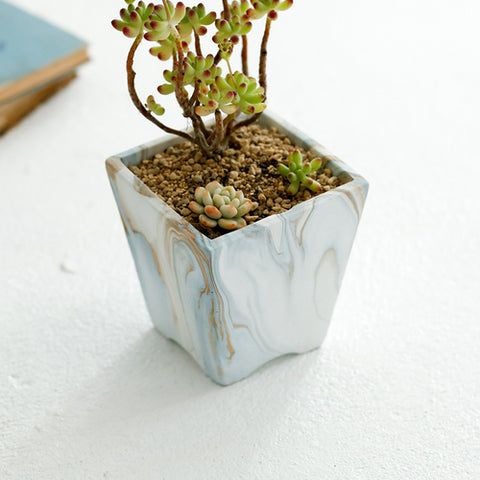 Concrete Succulent Planter with Drainage Hole -- Marble