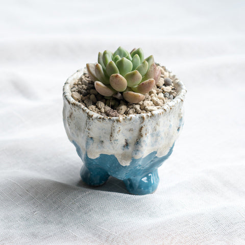 Small Ceramic Succulent Planter with Drainage Hole -- Imp