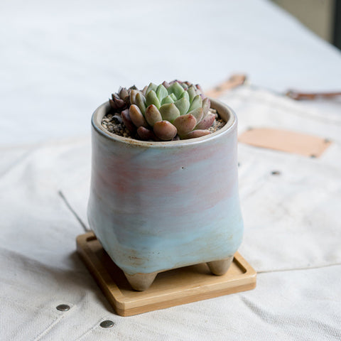 Small Ceramic Succulent Planter with Drainage Hole and Bamboo Tray/Saucer -- Beasties