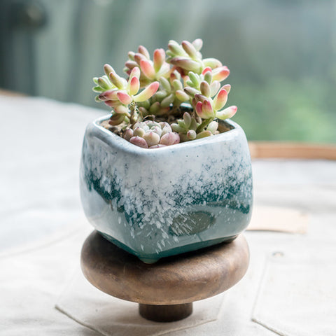 Small Ceramic Succulent Planter with Drainage Hole -- Winter Creeks