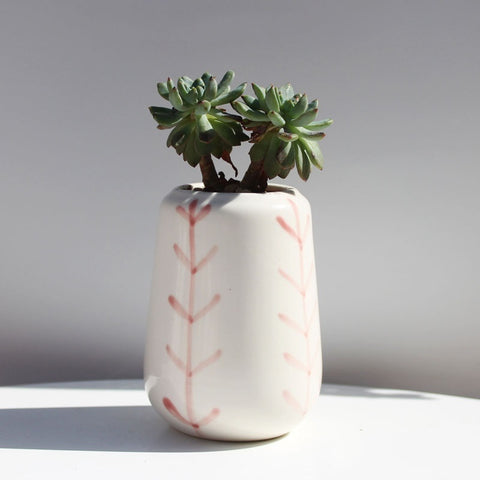 Small Ceramic Square Pink Succulent Planters with Drainage Hole