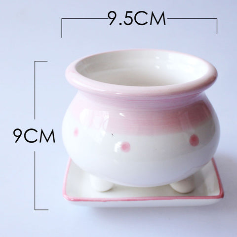Small Ceramic Pink Succulent Planter with Drainage Hole and Saucer