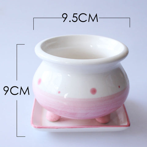Small Ceramic Pink Succulent Planter with Drainage Hole