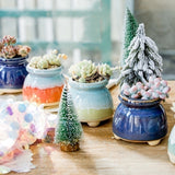 Ceramic Succulent Planters with Drainage Hole -- Yogurt