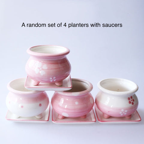 Random Set of 4 Small Ceramic Pink Succulent Planters with Drainage Hole and Saucers