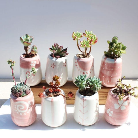 Set of 8 Small Ceramic Square Pink Succulent Planters with Drainage Hole