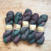 Load image into Gallery viewer, Coastal Colours - Hand Dyed BFL 4 ply