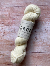 Load image into Gallery viewer, WYS The Croft Shetland DK