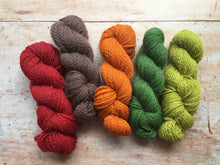 Load image into Gallery viewer, Doulton Border Leicester 4 ply Mini Skeins