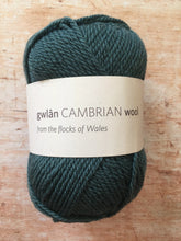 Load image into Gallery viewer, gwlân Cambrian Wool DK