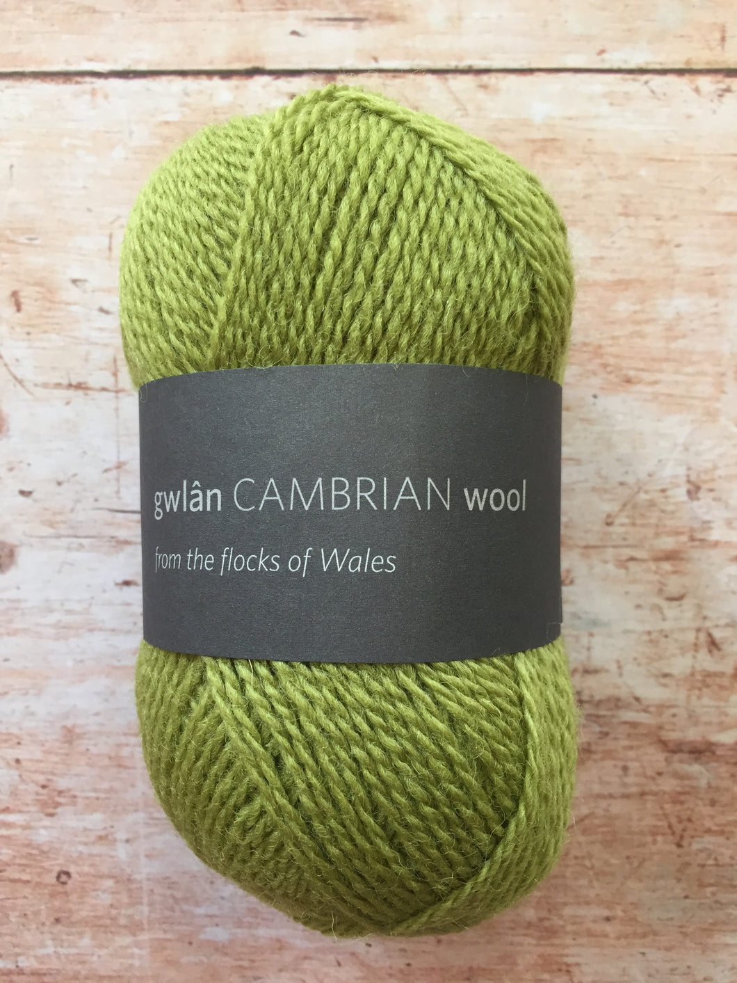 gwlân Cambrian Wool 4 ply
