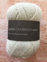 Load image into Gallery viewer, gwlân Cambrian Wool 4 ply