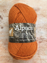 Load image into Gallery viewer, Town End Alpacas - Morecambe DK