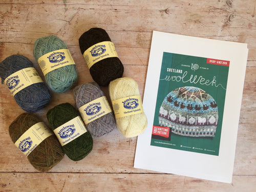 Roadside Beanie Kit - Shetland Wool Week Hat