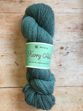 Load image into Gallery viewer, Northern Yarn - Kerry Hill
