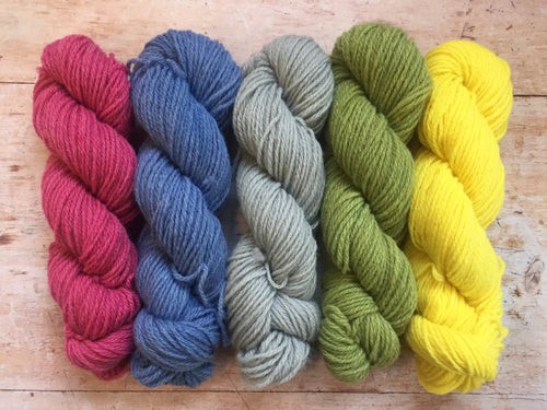 Northern Yarn - Lynn DK - hand dyed by Pook