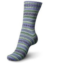 Load image into Gallery viewer, Regia - Colour & Design Line (Arne & Carlos) - 4 ply Sock Yarn