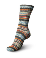 Load image into Gallery viewer, Regia - Design Line by Arne & Carlos - DK Sock Yarn