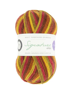 WYS Signature 4 ply - Winwick Mum Seasons - Signature 4 ply