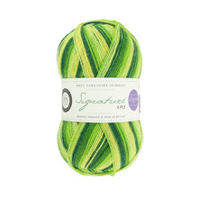 Load image into Gallery viewer, WYS Signature 4 ply - Winwick Mum Seasons - Signature 4 ply