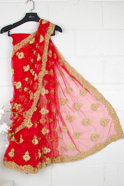 Red Nett Sequins Saree
