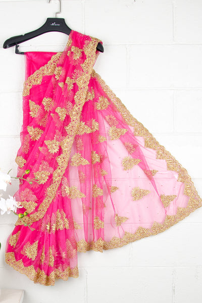 Pink Nett Sequins Saree