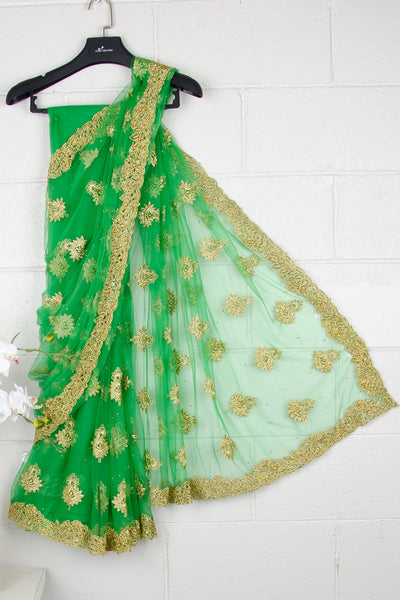 Green Nett Sequins Saree