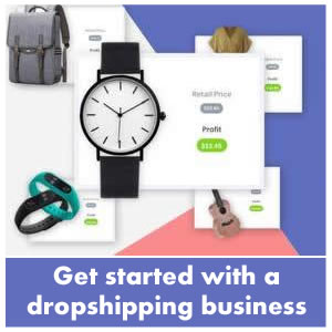 shopify drop ship business