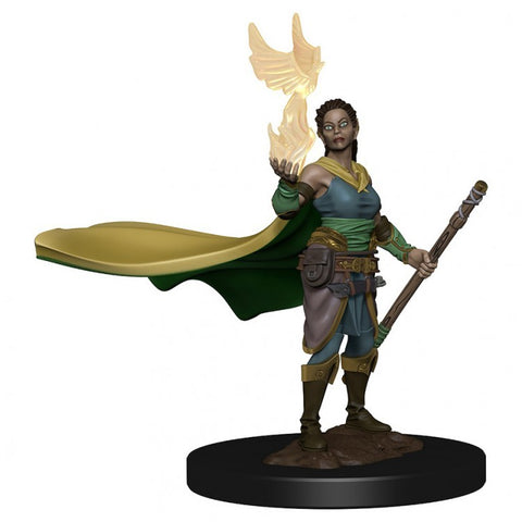 D&D Premium Figures: Elf Female Druid