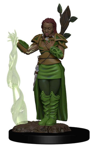 Dungeons & Dragons Icons of the Realms Premium Figures: W2 Human Female Druid
