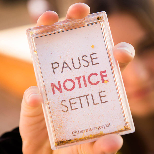 Pause Notice Settle Mini Snow Globe