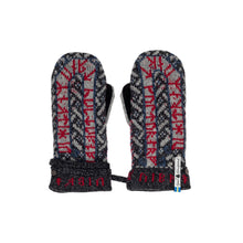Load image into Gallery viewer, Futhark Pattern Suede Palm Swedish Mittens