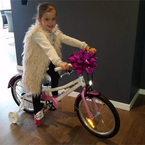 Pink Girls Bike with Matching Mudguards