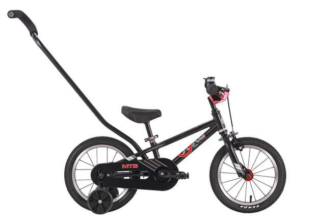 E-250 MTB (Mountain Bike)