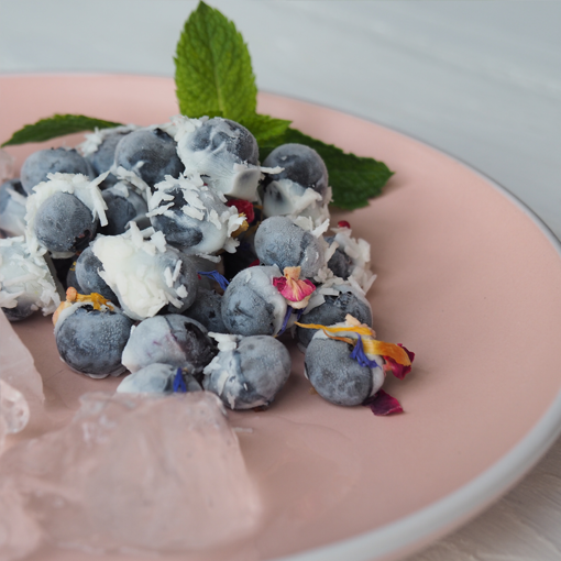 FroYo Blueberry Bites