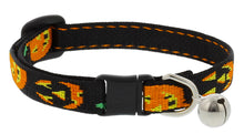 "Load image into Gallery viewer, Lupine ""Jack O Lantern"" Halloween Cat Collar with bell, from Cat Supplies and More"