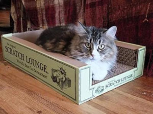 Scratch Lounge Cat Scratcher - Cat Supplies and More