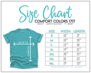 No Control Comfort Colors T-Shirt