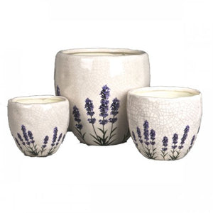 Set of 3 Ceramic Lavender Planters