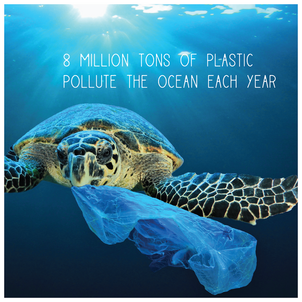 Ocean Plastic Pollution