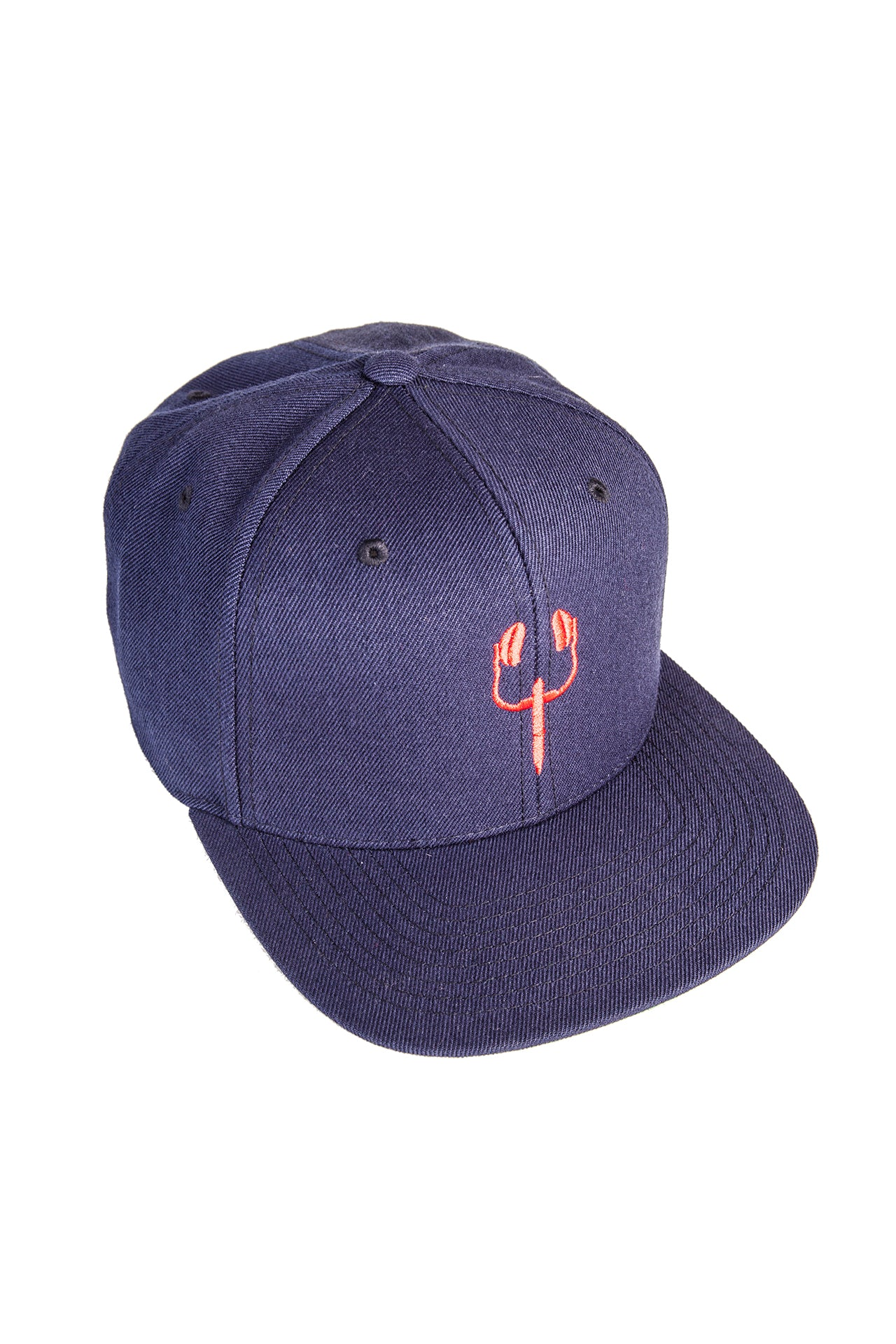 the provocateur idol snapback hat