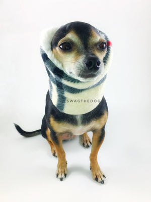 Furberry Swagsnood - Full Front View of Hugo, Cute Chihuahua Dog sitting Wearing Cream Burberry plaid Print Fleece Dog Snood covering his ears and cream faux fur peeking out